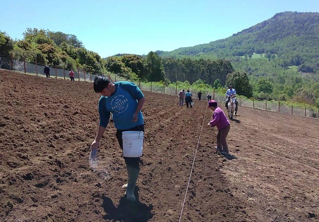 CILE – Colloborare con Madre Terra (Ñuke Mapu) per far crescere la speranza